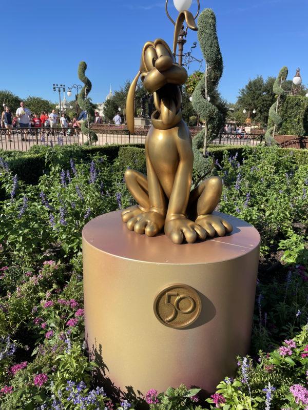 Pluto (6) - who's a good boy?