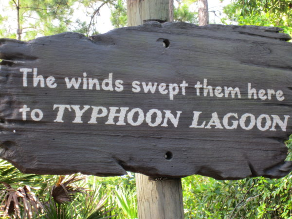 The winds swept them here to Typhoon Lagoon.