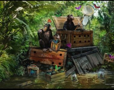 Jungle Cruise. Photo credits (C) Disney Enterprises, Inc. All Rights Reserved