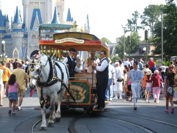 You can see horse-drawn trolleys on Main Street USA in Magic Kingdom!