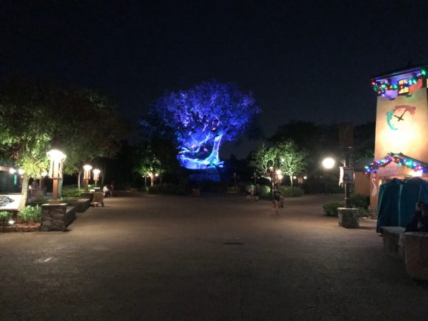 The parks feel very, very empty during After Hours. It's a great time to take in the headliner attractions.