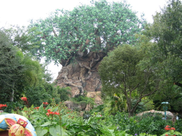 The Tree of Life is Animal Kingdom's icon, and it's unlike any other Disney park icon.