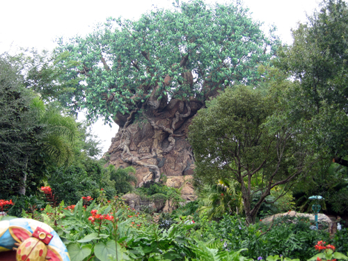 Discovery Island is home to the park's icon, Tree of Life.
