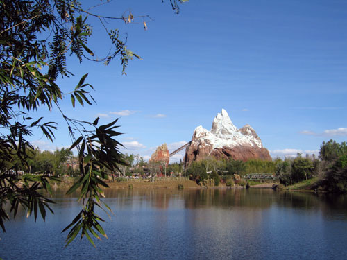 Thrill seekers will want to experience Expedition Everest.