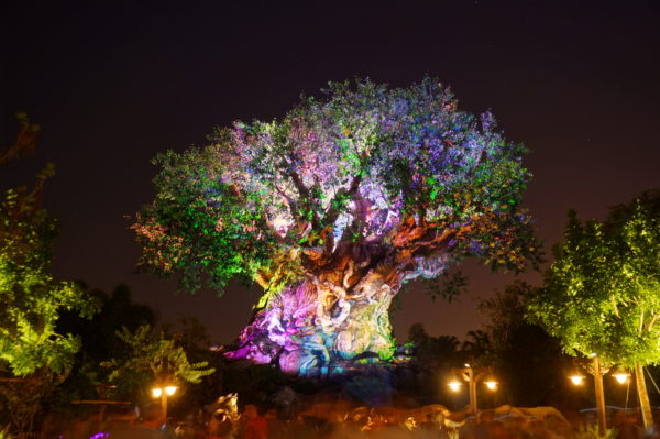 Tree of Life Awakenings are an awe-inspiring nighttime show!