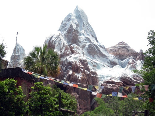 Expedition Everest is the most expensive rollercoaster ever built and features actual artifacts from the real Mt. Everest in Nepal.