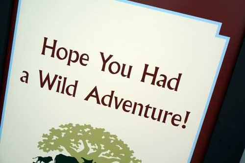 I hope you enjoyed the tour of Animal Kingdom!