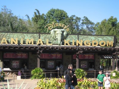 Disney's Animal Kingdom park has so much to explore.