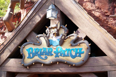 Welcome to the Briar Patch.