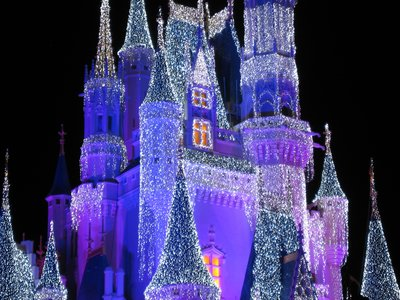 The Dream Lights on Cinderella Castle are made of energy efficient LED bulbs, but they magically glow and look like snow or ice.