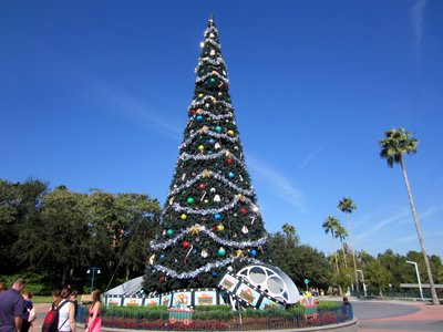 Tree - Christmas at Diseny's Hollywood Studios