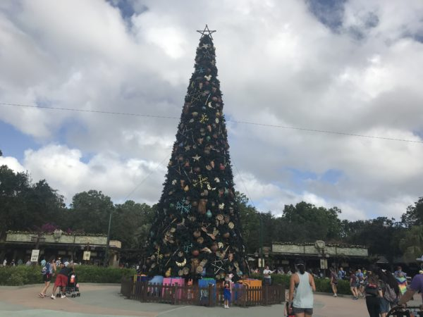 Disney has installed the main Christmas tree for the park.  It is located after security, but before the ticket booths.