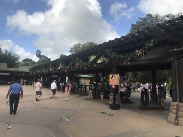 The cover over the entry touchpoints has a nice display of garland.  You can see the floating mountains of Pandora in the distance.