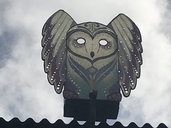 I like how this owl has his wings out.