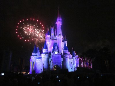 The fireworks over Cinderella Castle are a must-see Disney show.