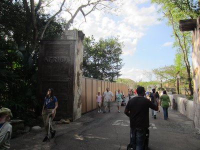 Disney has put up construction walls at the entrance for Africa to clear the new site.