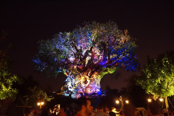 No Disney idea is ever totally gone. When Animal Kingdom opened for evening hours, the Night Kingdom idea was resurrected and made reality!
