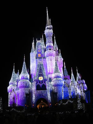 Several tours offer an opportunity to see the amazing Christmas decorations throughout Disney World.