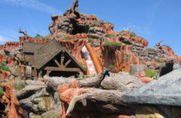 Magic Kingdom's Splash Mountain