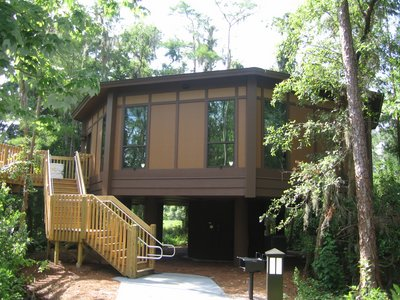 Disney Deluxe Tree House Villas
