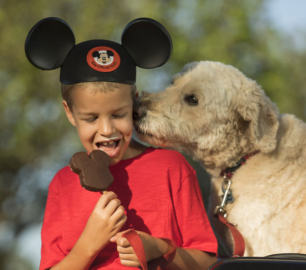 Disney will welcome dogs in a pilot set of their resort hotels. Photo credits (C) Disney Enterprises, Inc. All Rights Reserved
