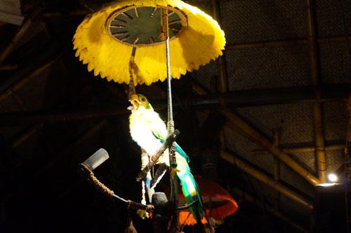 Parrots host the show.
