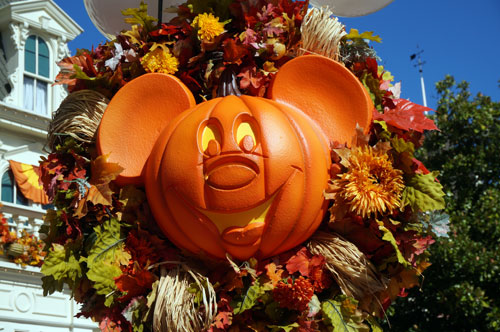 Mickey pumpkins are a yearly favorite.