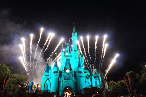 Huge Disney fans see the nighttime spectaculars.