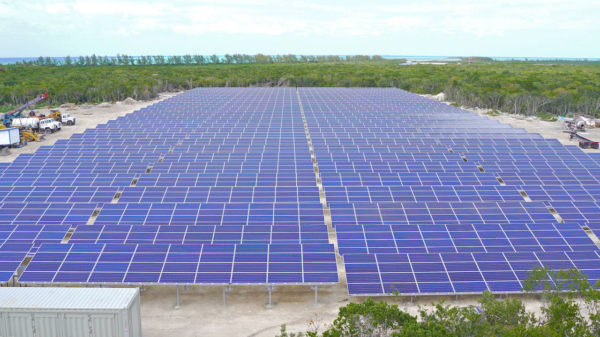 The Castaway Cay solar farm will provide 70% of the island's energy needs. Photo credits (C) Disney Enterprises, Inc. All Rights Reserved