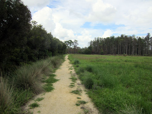 Many of the trails are simple dirt paths.