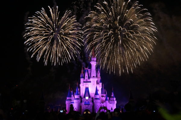 Disney offers plenty of specialty cruises with magical views of the fireworks!