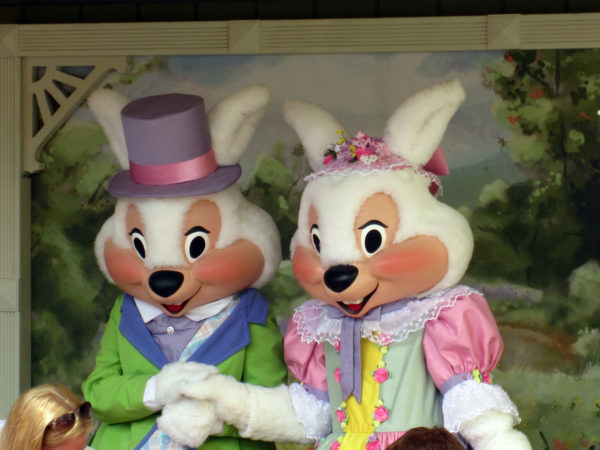 Meet Mr. & Mrs. Bunny at Magic Kingdom!