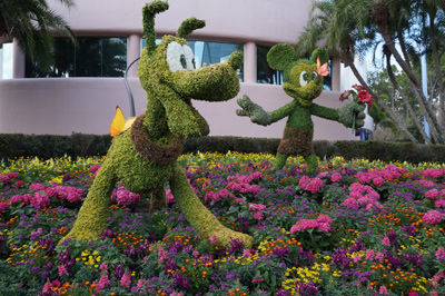 Here is a beautiful display in the shadow of Spaceship Earth.
