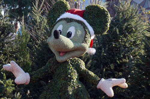 Minnie Mouse topiary, complete with Santa hat.