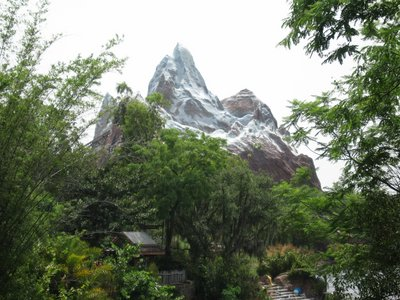 Expedition Everest is a centerpiece ride at Disney's Animal Kingdom.