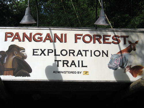 Don't miss the animal encounters at Pangani Forest Exploration Trail!
