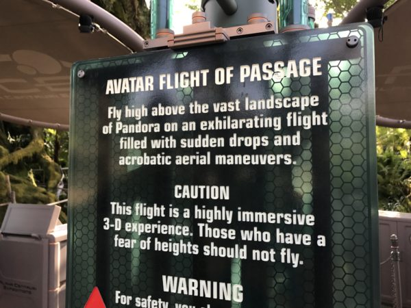 Avatar Flight of Passage is a 3D attraction, and those who are afraid of heights might be bothered by the immersive experience.