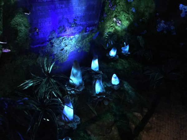 Here are some bioluminescent flowers lit inside the queue.