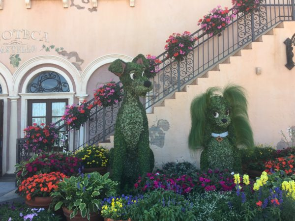 Lady and Tramp are falling in love in Italy!