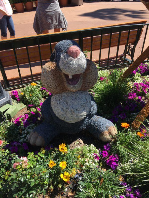Thumper isn't too far behind!