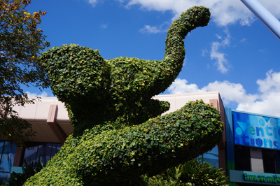 Cool elephant.