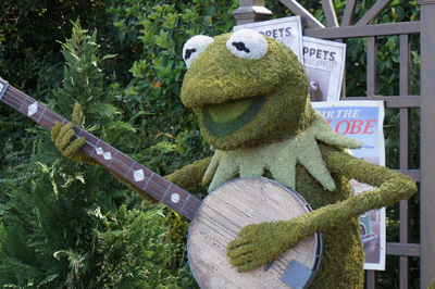 Welcome Kermit to the Epcot topiaries!