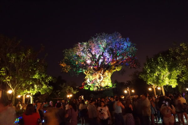 The Tree of Life is getting a new show honoring Disney's The Lion King!