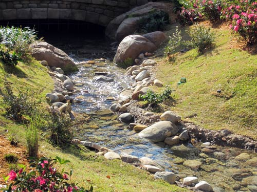 Enjoy the views of the nearby brook.