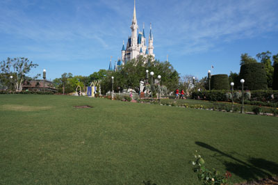 All this beauty is so close to Cinderella Castle.