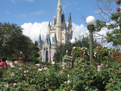 Cinderella Castle is probably the most iconic structure in all of Disney World.
