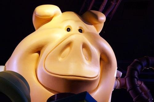 Pigs can be fun!