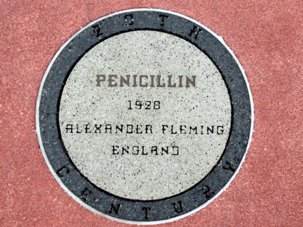 In 1928, Alexander Fleming created penicillin, which was one of the first antibiotics used to treat bacterial infections effectively. Penicillin is still used today but isn't always as effective as it once was because bacteria have become resistant to it.