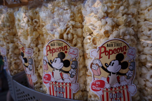 it's not a theme park visit without popcorn!