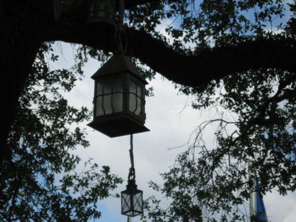 13 lanterns hang from the Liberty Tree representing the 13 original colonies.